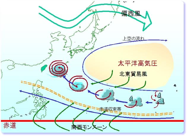 ○台風情報2