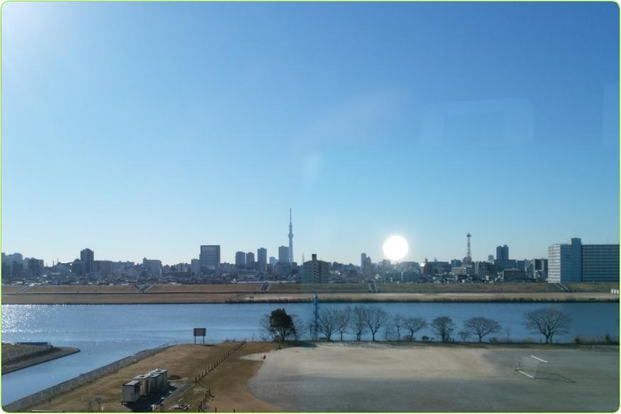 ○荒川西新井緑地